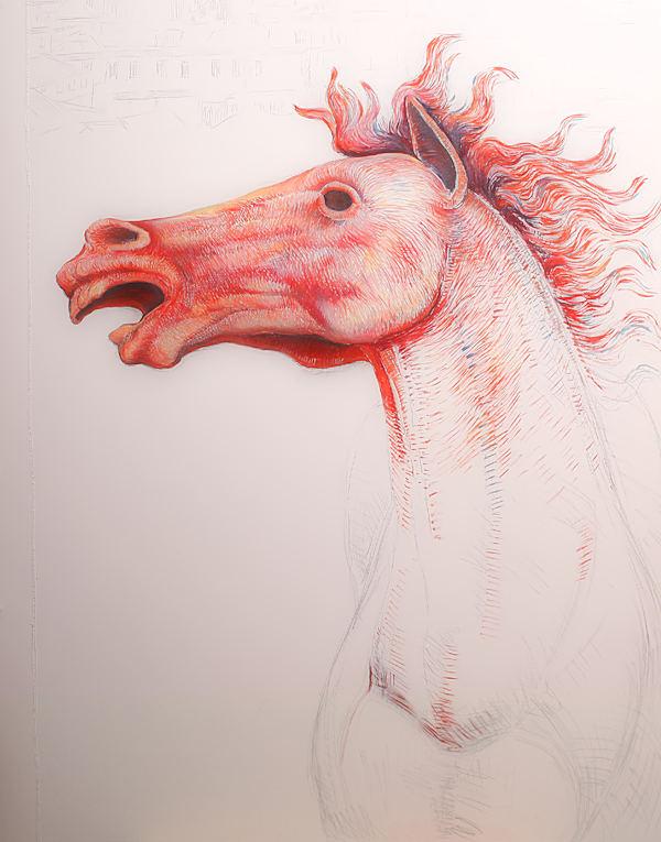 Particolare del drappellone: il cavallo in fase intermedia tra linee, colori e ombre
